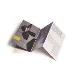 Accordion Flyer Printing