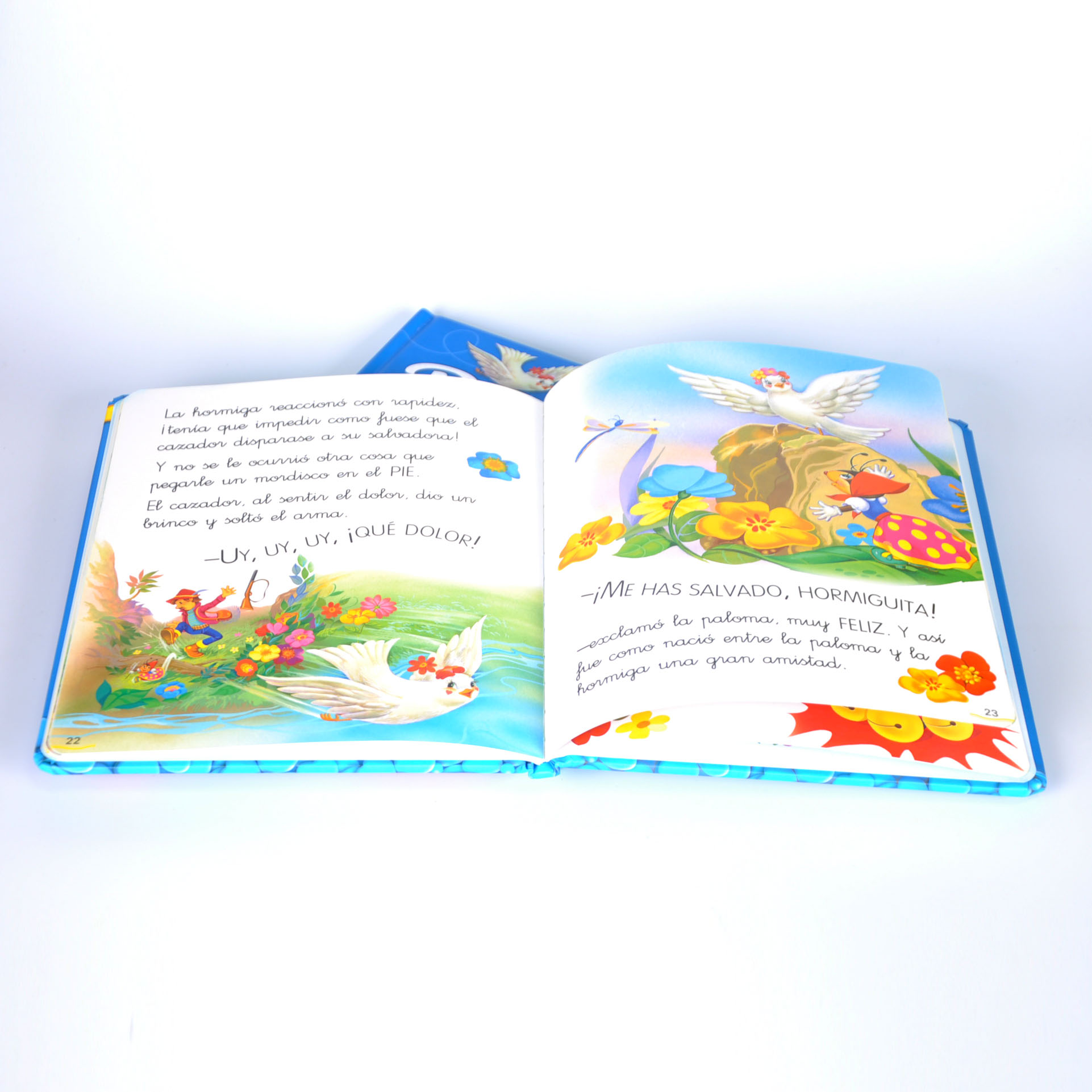 Customized book (2)