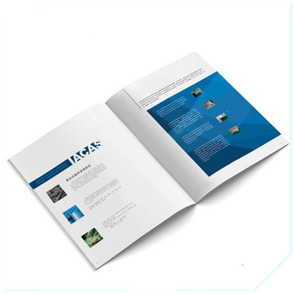 Offset Printing Business (1)